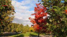 Free Autumn Stock Photography - 21285502