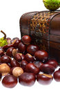 Free Chestnuts In The Chest And About On A White Stock Photo - 21290910