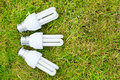 Free Fan Of Energy Saving Bulbs In Grass Stock Images - 21291524