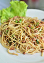 Free Spicy Fried Spaghetti With Pork Stock Image - 21293351