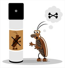 Free Brown Cockroach Royalty Free Stock Image - 21290986