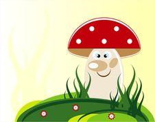 Free Mushroom In Grass Royalty Free Stock Photo - 21291035
