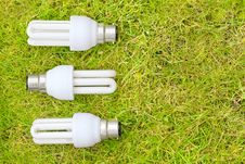 Energy Saving Bulbs In Grass Stock Images