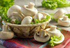 Free Mushrooms Stock Images - 21291924