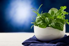 Free Herbs Highlighted By Spot Light Royalty Free Stock Photos - 21292478