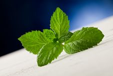 Free Mint Leaves On Wooden Table With Spot Light Stock Photo - 21292740