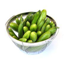 Free Cucumbers 0017 Stock Photo - 21293190