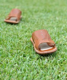 Free Walking Slippers 01 Royalty Free Stock Image - 21293266