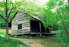 Free Old Log House With Dogwood Blooms Stock Photos - 21295103