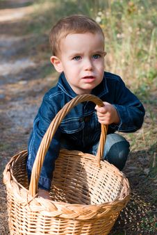 Free Cute Boy And Basket Royalty Free Stock Photo - 21295555