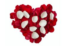 Free White And Red Rose Petals Stock Image - 21295581