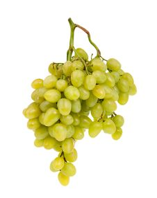 Free Bunch Of Grapes Royalty Free Stock Photography - 21295727