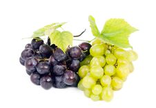 Free Bunch Of Grapes Stock Images - 21295774
