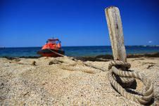 Free On The Beach Stock Photos - 21296333
