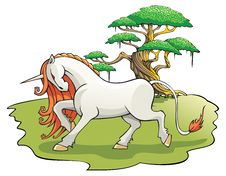 Free Mythical Unicorn In The Enchanted Forest Stock Photography - 21296542