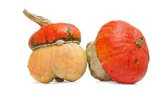 Free Two Small Pumpkins With Hat Royalty Free Stock Photo - 21297275