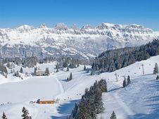 Free Skiing Slope Royalty Free Stock Photography - 21297577