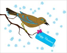 Free Bird On A Branch With A Greeting Card Royalty Free Stock Photo - 21298505