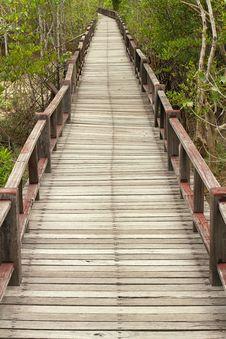 Free Wood Boardwalks Royalty Free Stock Photography - 21298617