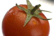 Free Tomato Stock Images - 2133124