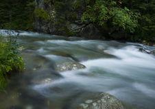 Free Stream In Mountains Royalty Free Stock Photos - 2133428