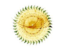 Yellow, Green Fractal Wheel Royalty Free Stock Images