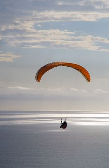 Free Soaring Over The Ocean Royalty Free Stock Images - 2136699