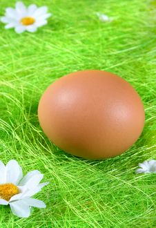 Free Easter Egg Stock Photo - 2138780