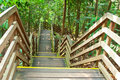 Free Wooden Steps Stock Images - 21301174