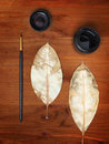 Free Ink, Two Dry Leaves And Brush Stock Image - 21302741