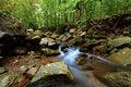 Free Peaceful Woodland Stream Royalty Free Stock Photo - 21303255