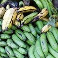 Free Green And Yellow Bananas Stock Photos - 21304123
