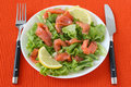 Free Salad With Salmon Royalty Free Stock Photo - 21307145