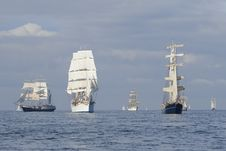 Free Parade Of Sail Stock Photos - 21303513