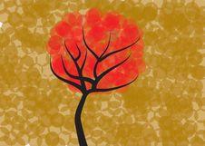 Free Autumn Tree Stock Photo - 21304290