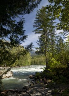 Free River In The Forest Royalty Free Stock Image - 21306696