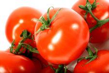 Free Isolated Tomato Royalty Free Stock Image - 21306886
