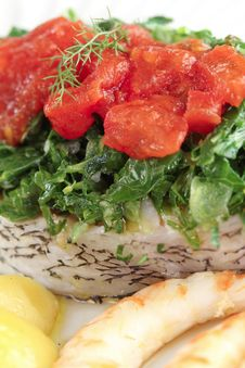 Free Slice Of White Sea Bass With Vegetables Royalty Free Stock Photography - 21307917