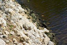 Free Water Embankment Royalty Free Stock Image - 21308276