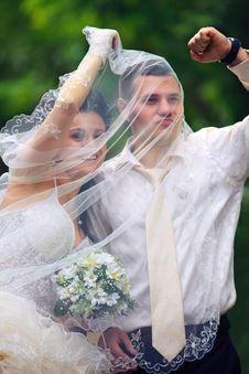 Free Wedding Couple Stock Photos - 21311423