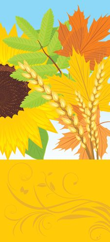 Free Abstract Autumn Banner Royalty Free Stock Photo - 21322365
