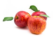 Free Red Apples With Leaf Stock Photo - 21332810