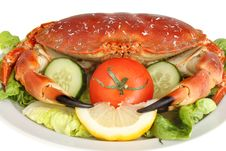 Free Crab Salad Closeup Stock Photography - 21336732