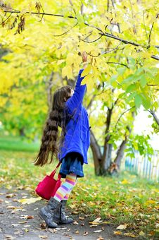 Free Funky Little Child Girl In Autumn Stock Images - 21339304