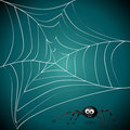 Free Spider Net Royalty Free Stock Image - 21354296