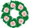Free Rose Wreath Stock Image - 21355761