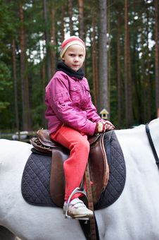 Free Girl Rider On A White Horse Stock Image - 21358031
