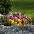 Free Flowerbed. Royalty Free Stock Photos - 21367018