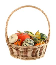 Free Basket Of Gourds Isolated Stock Photos - 21363283