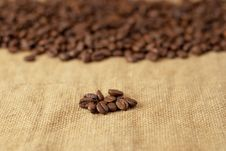 Free Beans Stock Images - 21363344